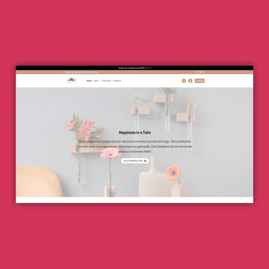 AMDstudio's website